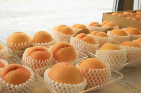 まぼろしの桃